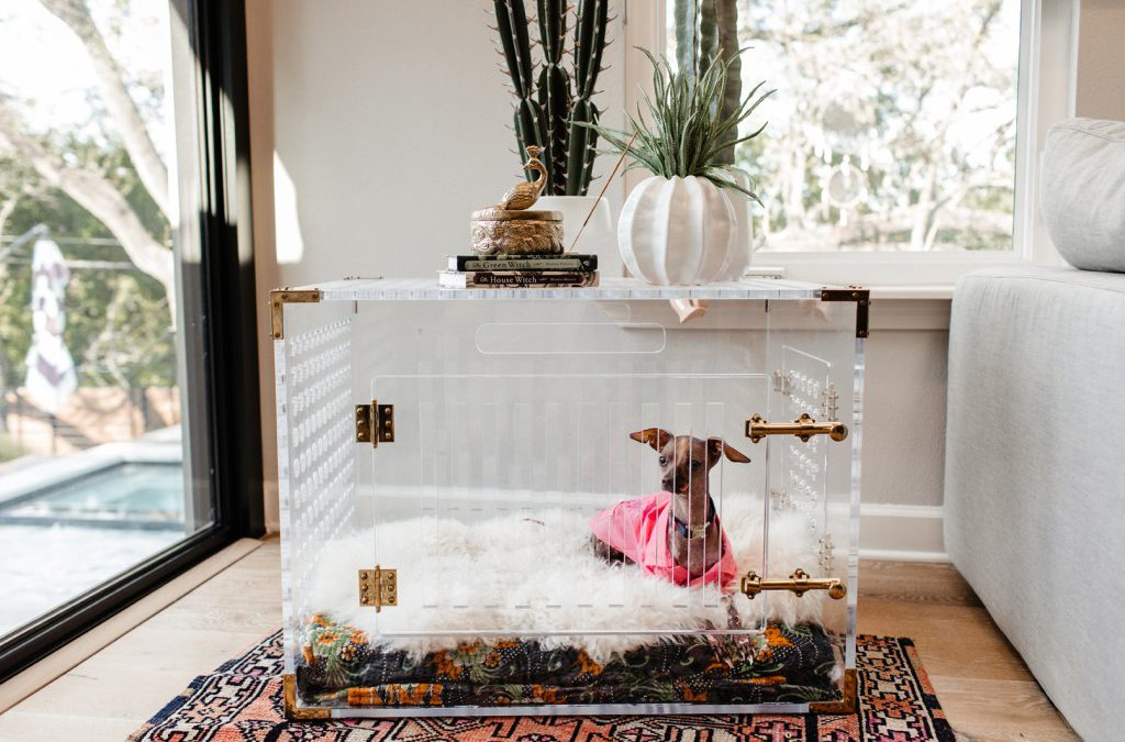 Tips from Urbane Design on Decorating for the Dogs